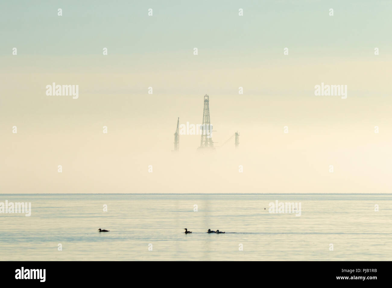 Oil platform rig covered in mist with birds in the sea Firth of Forth Scotland Stock Photo