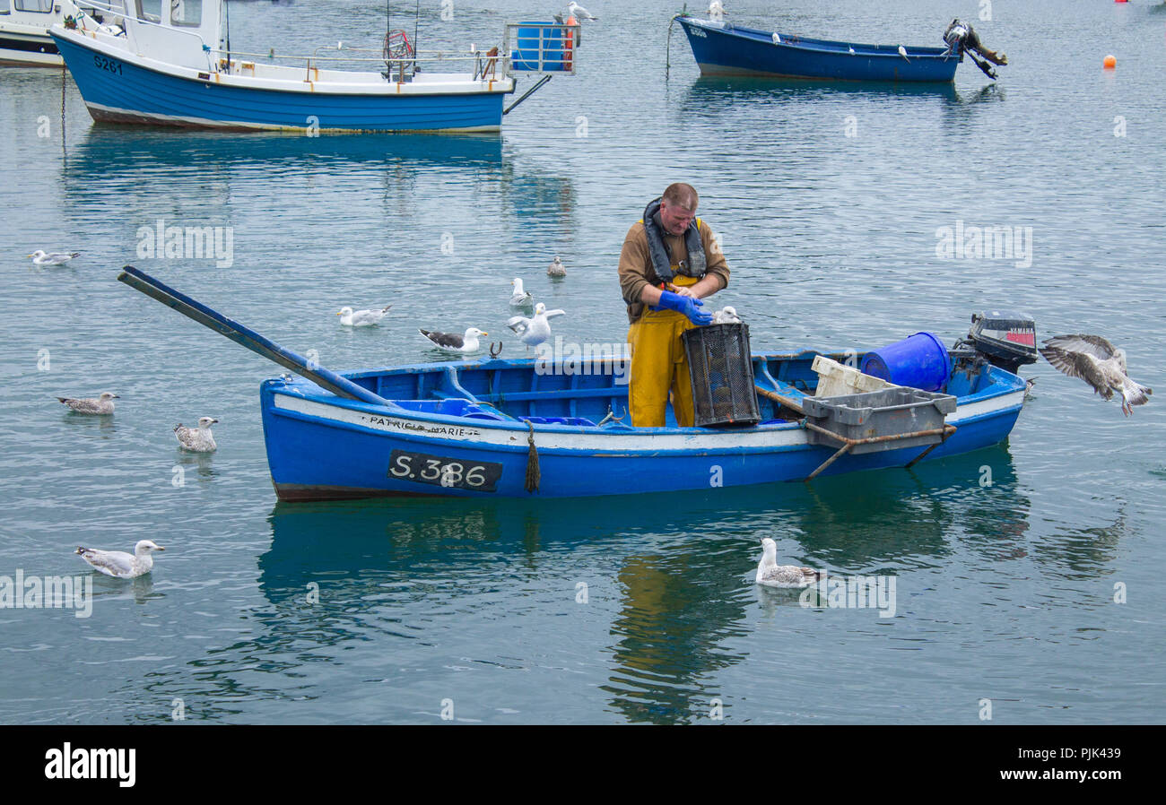 shrimp-fisherman-tending-his-pots-from-a-small-clinker-built-boat-with-seagulls-for-company-west-cork-ireland-PJK439.jpg