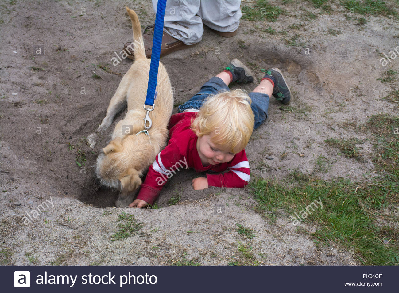 small-child-playing-in-the-dirt-with-a-pet-dog-digging-a-hole-concept-of-children-playing-outside-in-nature-healthy-childhood-natural-immunity-PK34CF.jpg