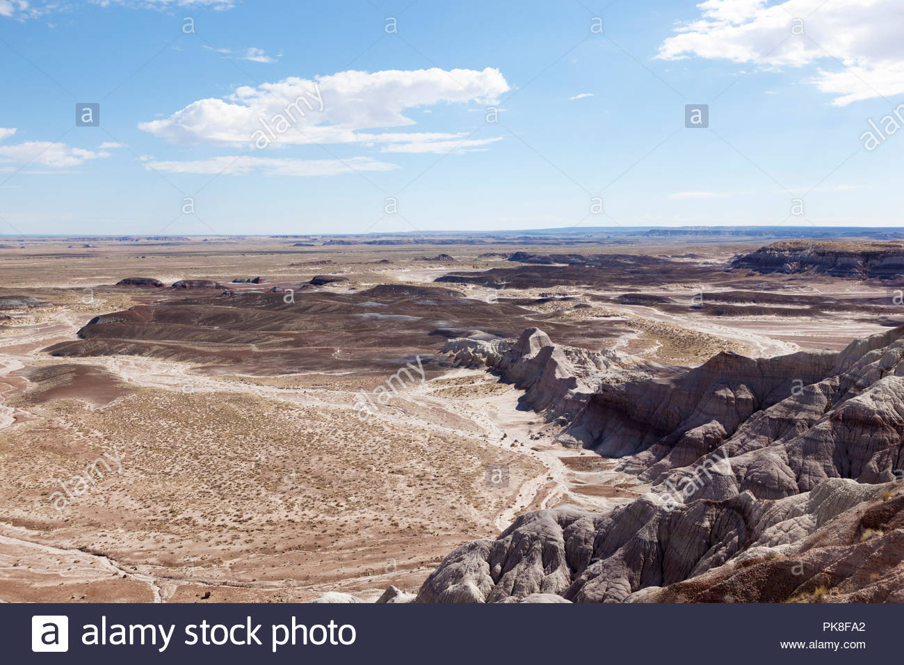view-from-blue-mesa-petrified-forest-national-park-arizona-usa-PK8FA2.jpg