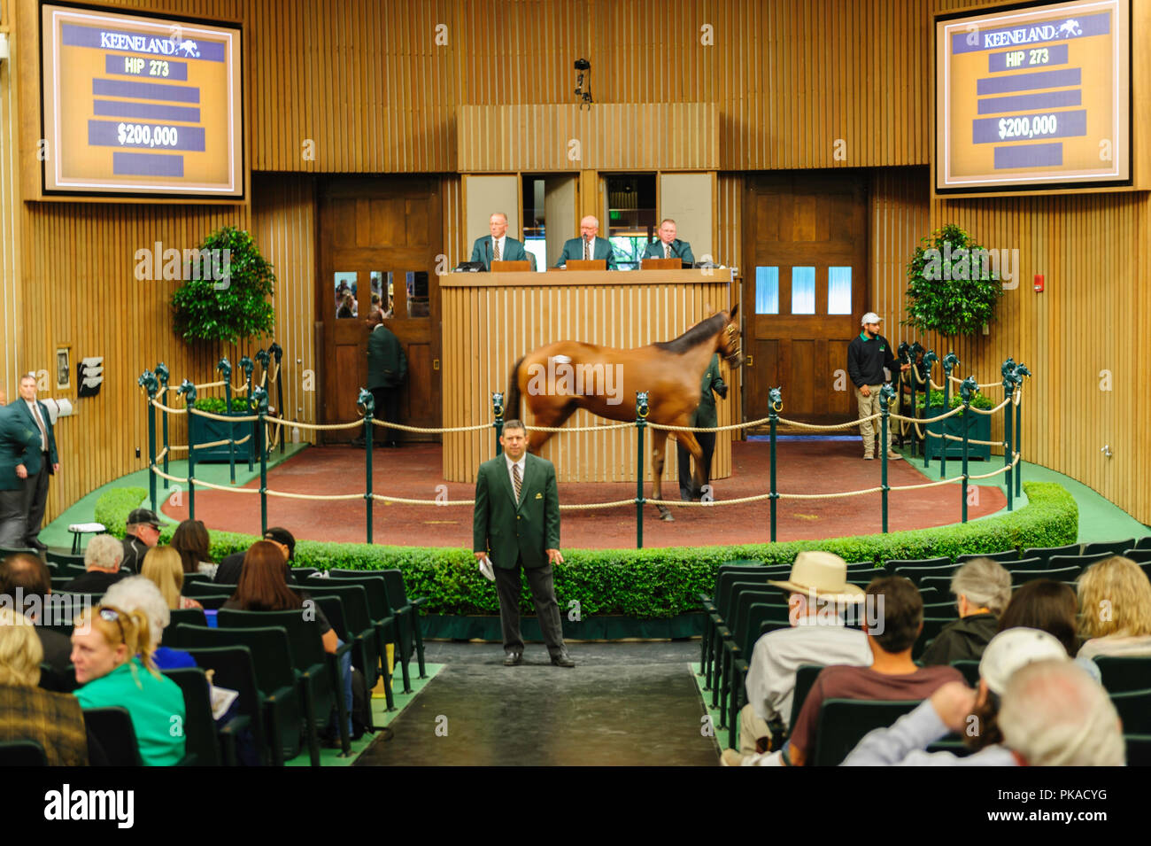 2018 Keeneland September Yearling SalesStock Photo