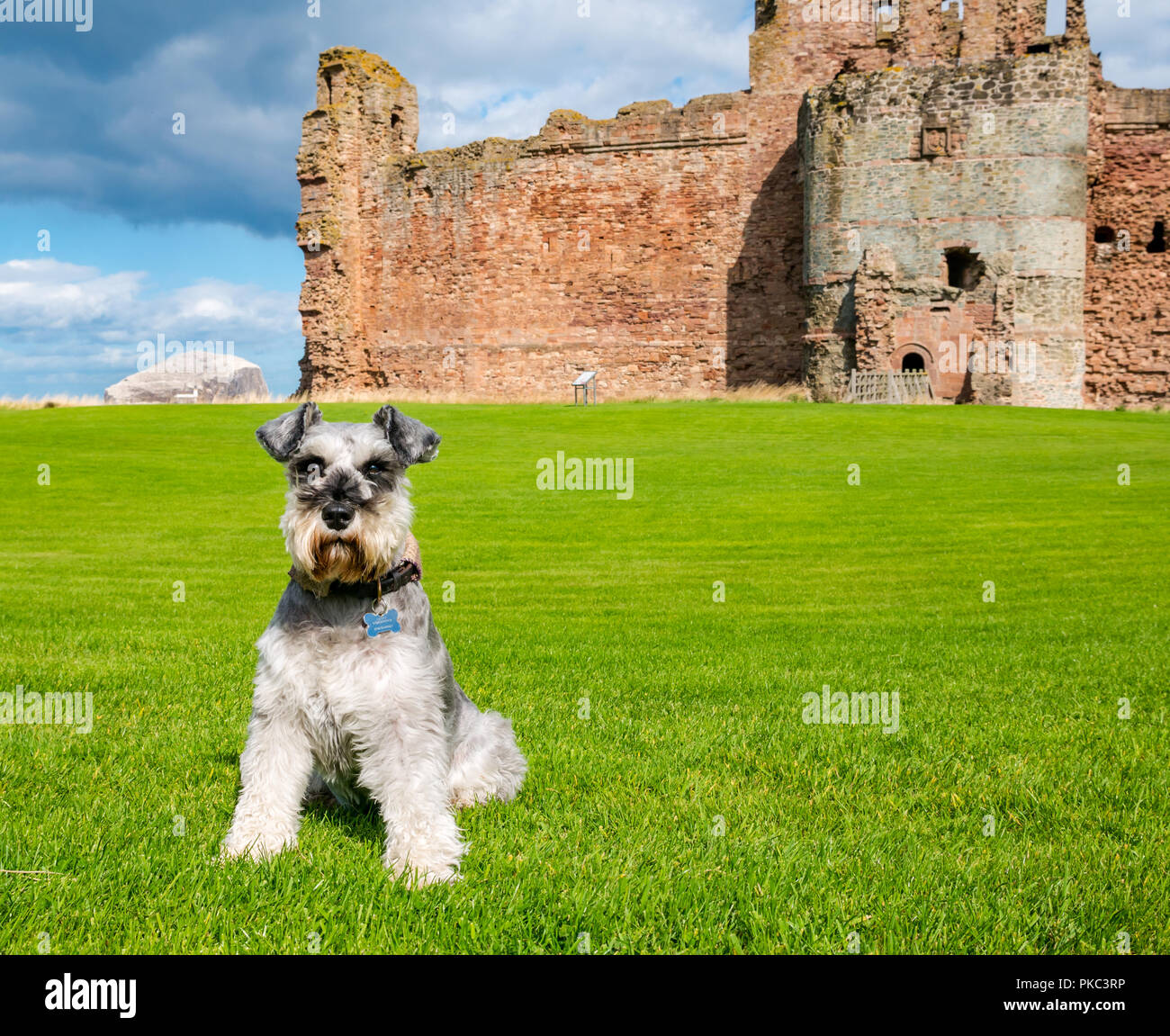 tantallon-castle-north-berwick-east-loth