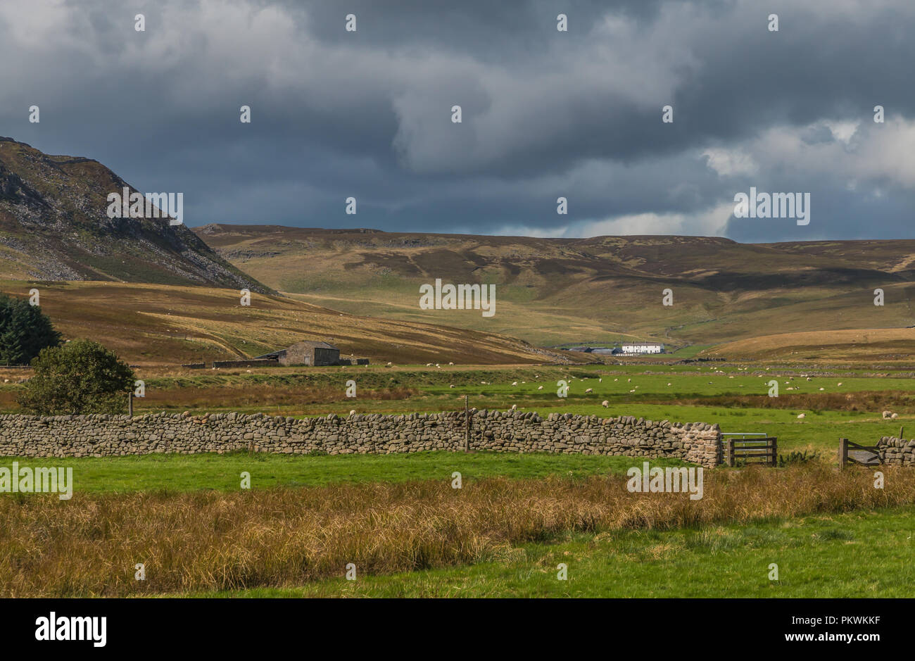 north-pennines-aonb-landscape-cronkley-scar-and-widdybank-farm-PKWKKF.jpg