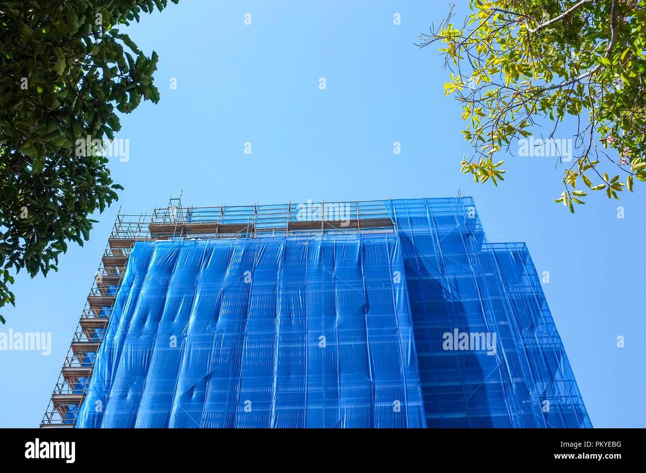blue-scaffolding-over-a-building-PKYEBG.jpg