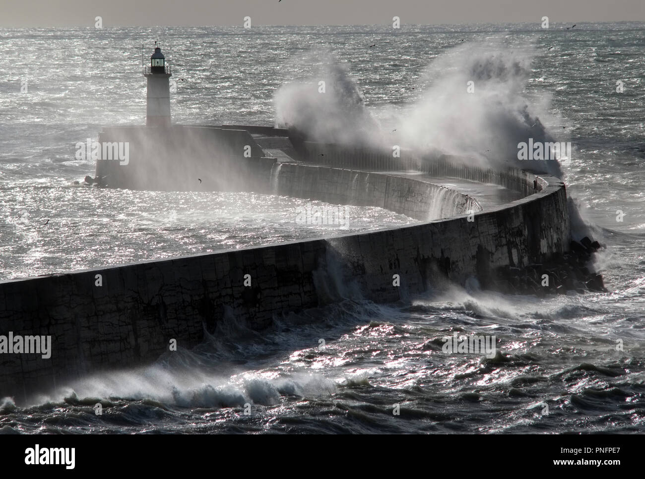 Newhaven, East Sussex, UK. 2st September 2018. Strong winds from Storm Bronagh hitting Newhaven breakwater as a ferry leaves for Dieppe, France. © Peter Cripps/Alamy Live News Stock Photo