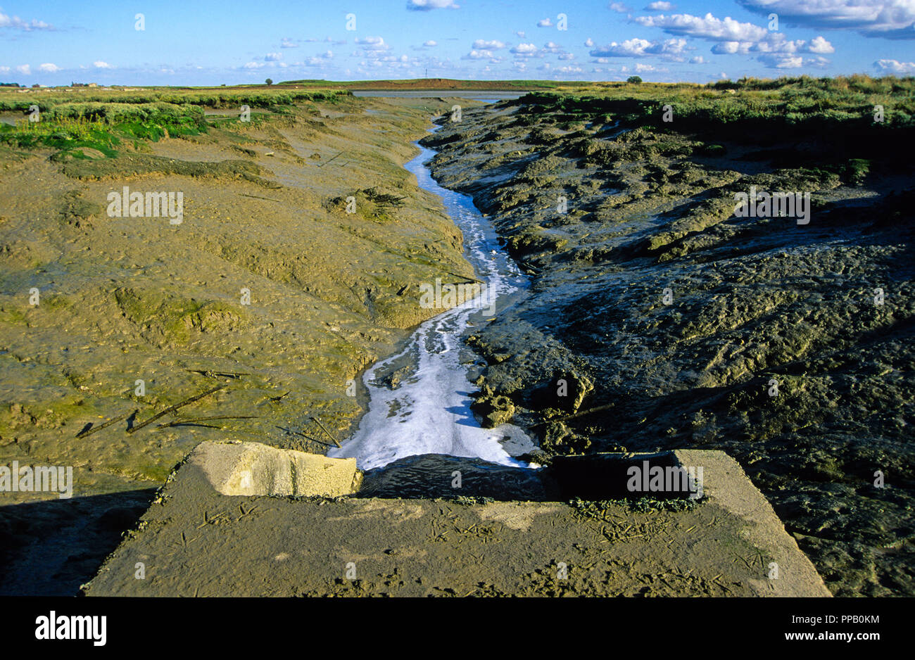 southern-water-sewage-outflow-kent-engla