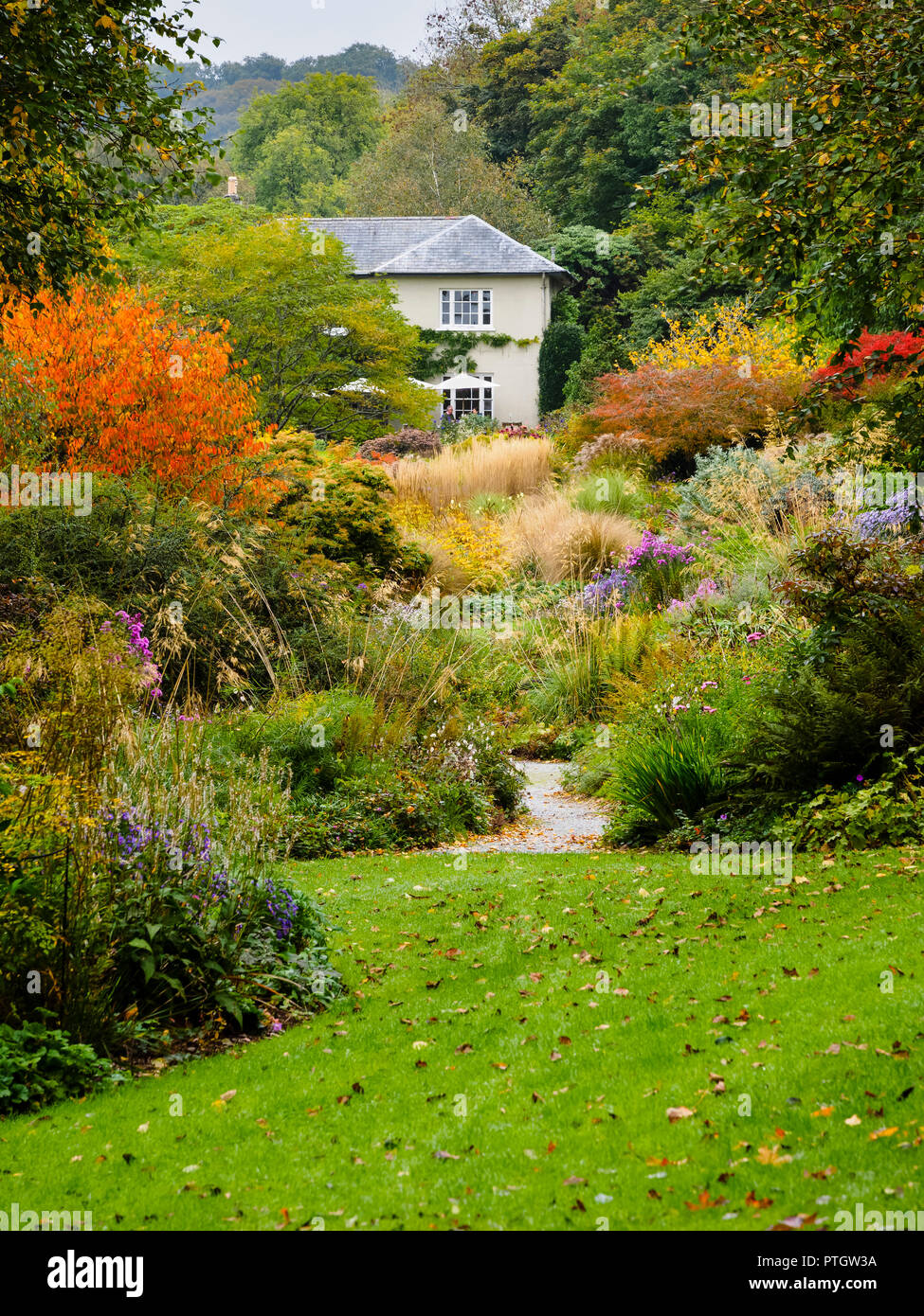 compressed-perspective-view-over-the-autumn-hues-of-the-long-walk-at-the-garden-house-buckland-monachorum-devon-uk-PTGW3A.jpg