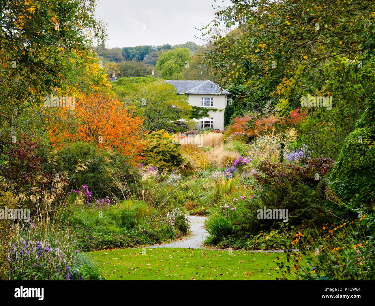 compressed-perspective-view-over-the-autumn-hues-of-the-long-walk-at-the-garden-house-buckland-monachorum-devon-uk-PTGW64.jpg