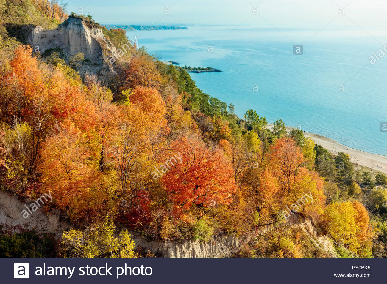 Autumn fall colour on the Scarborough Bluffs an escarpment above Bluffer's Park and Lake Ontario in Toronto Ontario Canada Stock Photo