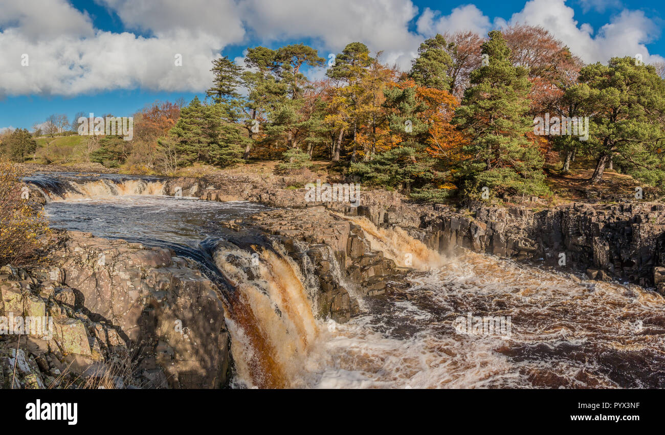 north-pennines-aonb-landscape-panoramic-view-of-low-force-waterfall-teesdale-from-the-pennine-way-with-autumn-colours-and-bright-sunshine-PYX3NF.jpg
