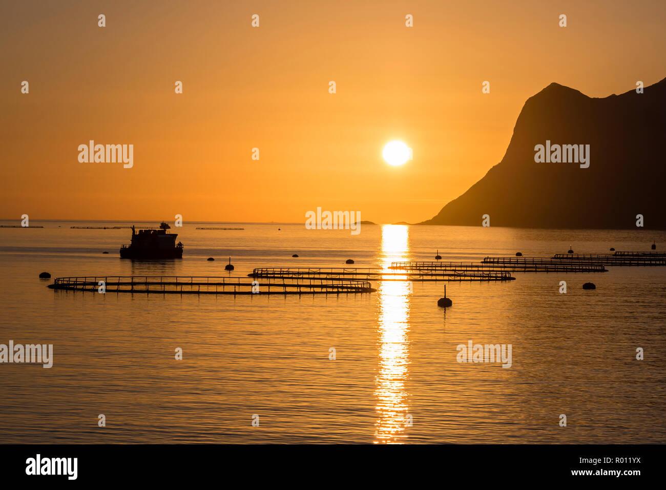 salmon-farm-in-fjord-mefjord-sunset-over