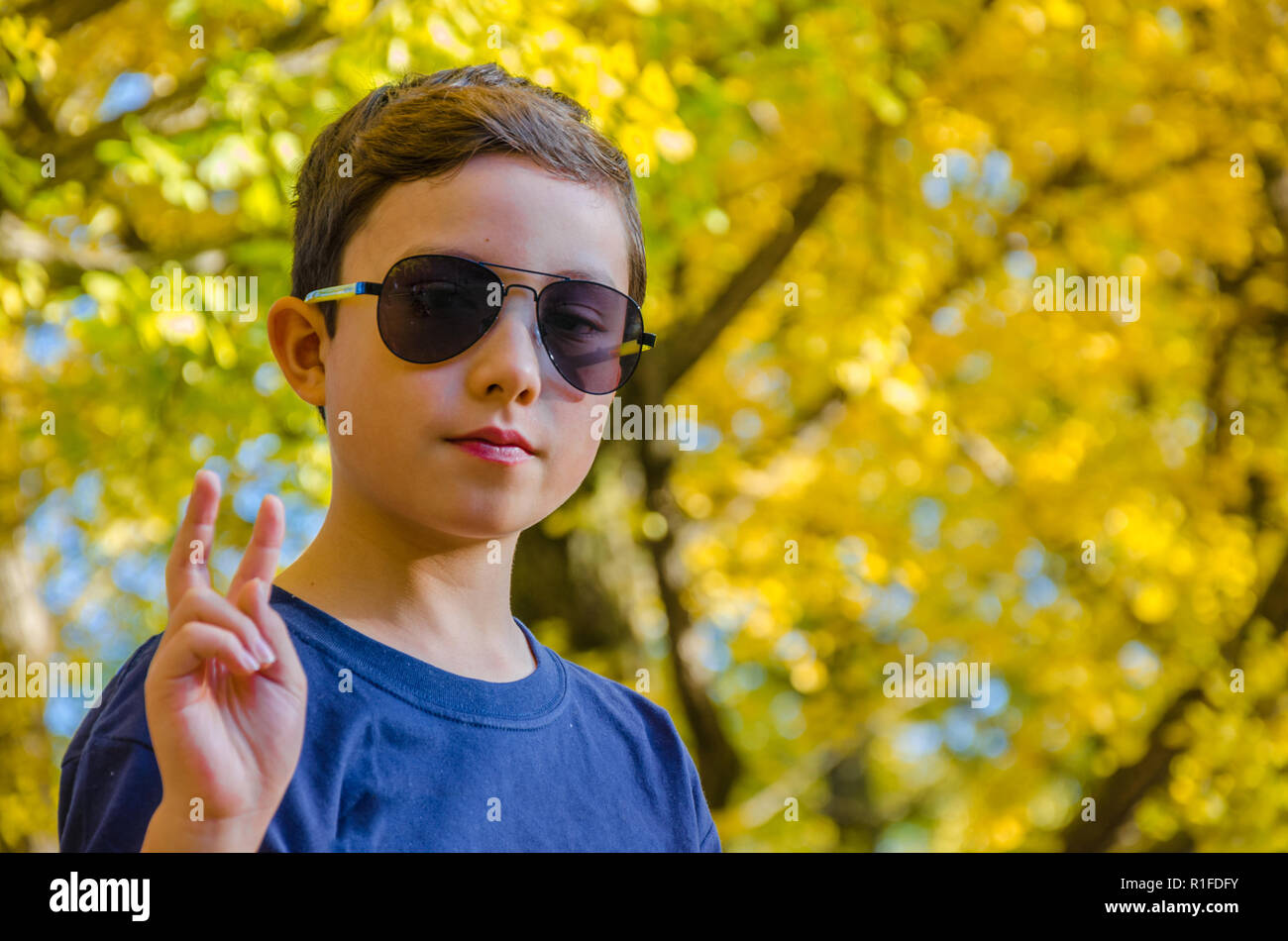 A portrait of a young boy against autumn leaves. Stock Photo