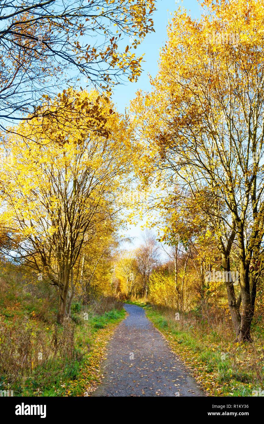 autumn-view-along-the-coast-to-coast-cyc
