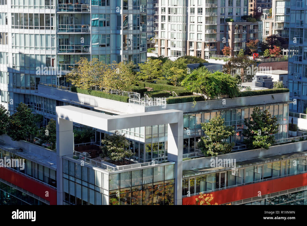 rooftop-gardens-on-modern-office-buildin