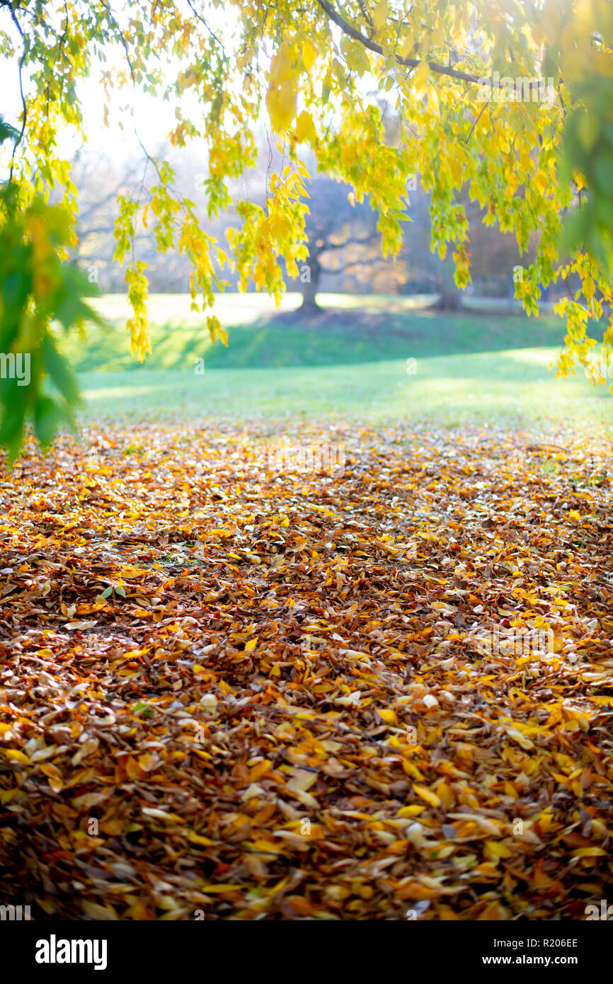 usa-maryland-md-brookside-gardens-park-i