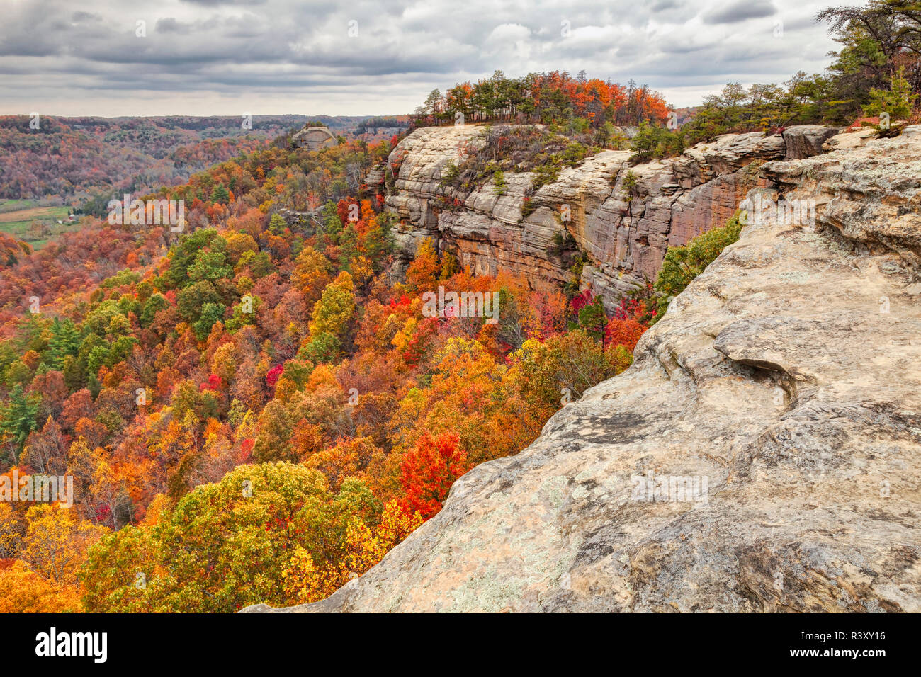 Fall colors, Red River Gorge, Kentucky Stock Photo