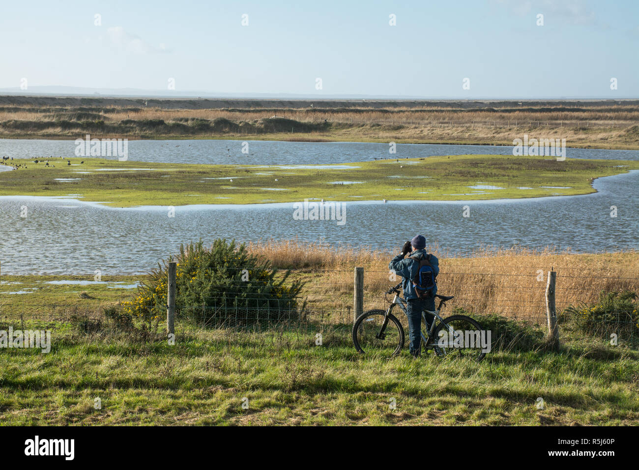 rspb-medmerry-nature-reserve-by-the-coast-west-sussex-uk-birdwatcher-on-a-bicycle-looking-at-birds-on-the-stilt-pools-through-binoculars-R5J60P.jpg