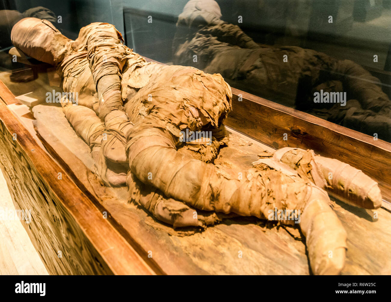 An Egyptian mummy circa 2300 B.C. reclines in a display case at the Michael C. Carlos Museum at Emory University, July 8, 2014, in Atlanta, Georgia. Stock Photo