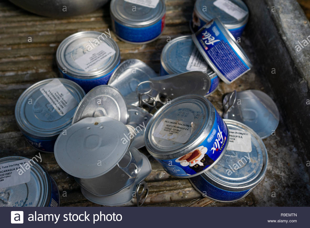 Cans for recycling are piled together before bagging. Stock Photo