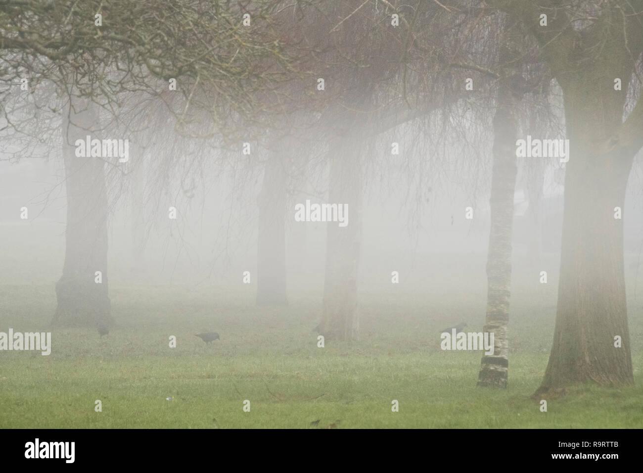 Salisbury, UK. 28th December 2018. Uk Weather. 10:25am and Salisbury still covered in fog Credit Paul Chambers/ Alamy News Stock Photo