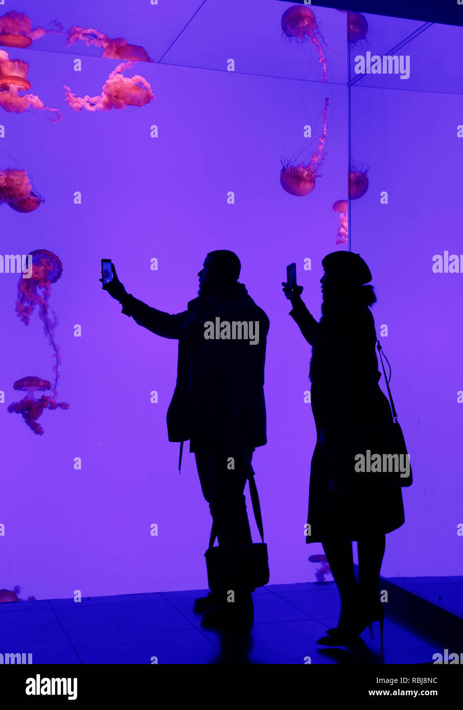 two-people-taking-phtots-silhouetted-aga