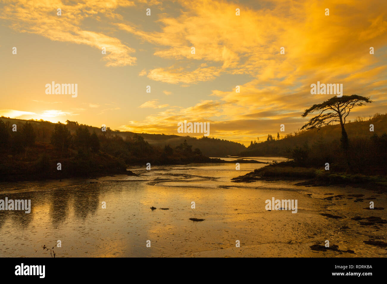 sunrise-or-dawn-over-castlehaven-harbour-west-cork-ireland-RDRKBA.jpg