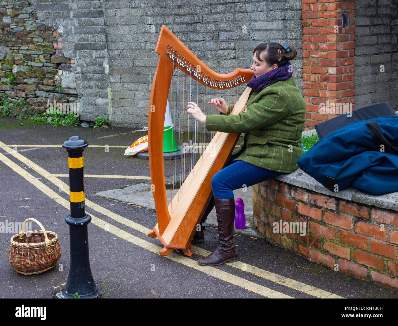 female-busker-playing-a-harp-for-money-sitting-on-a-brick-wall-RN130H.jpg
