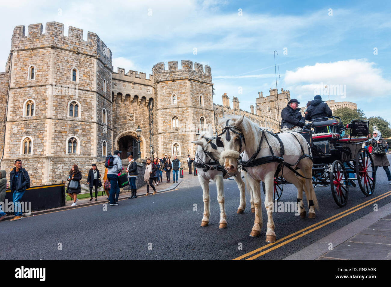 a-horse-drawn-carriage-outside-windsor-castle-pulled-by-two-white-horses-is-popular-with-tourists-and-offers-rides-around-windsor-RN8AGB.jpg