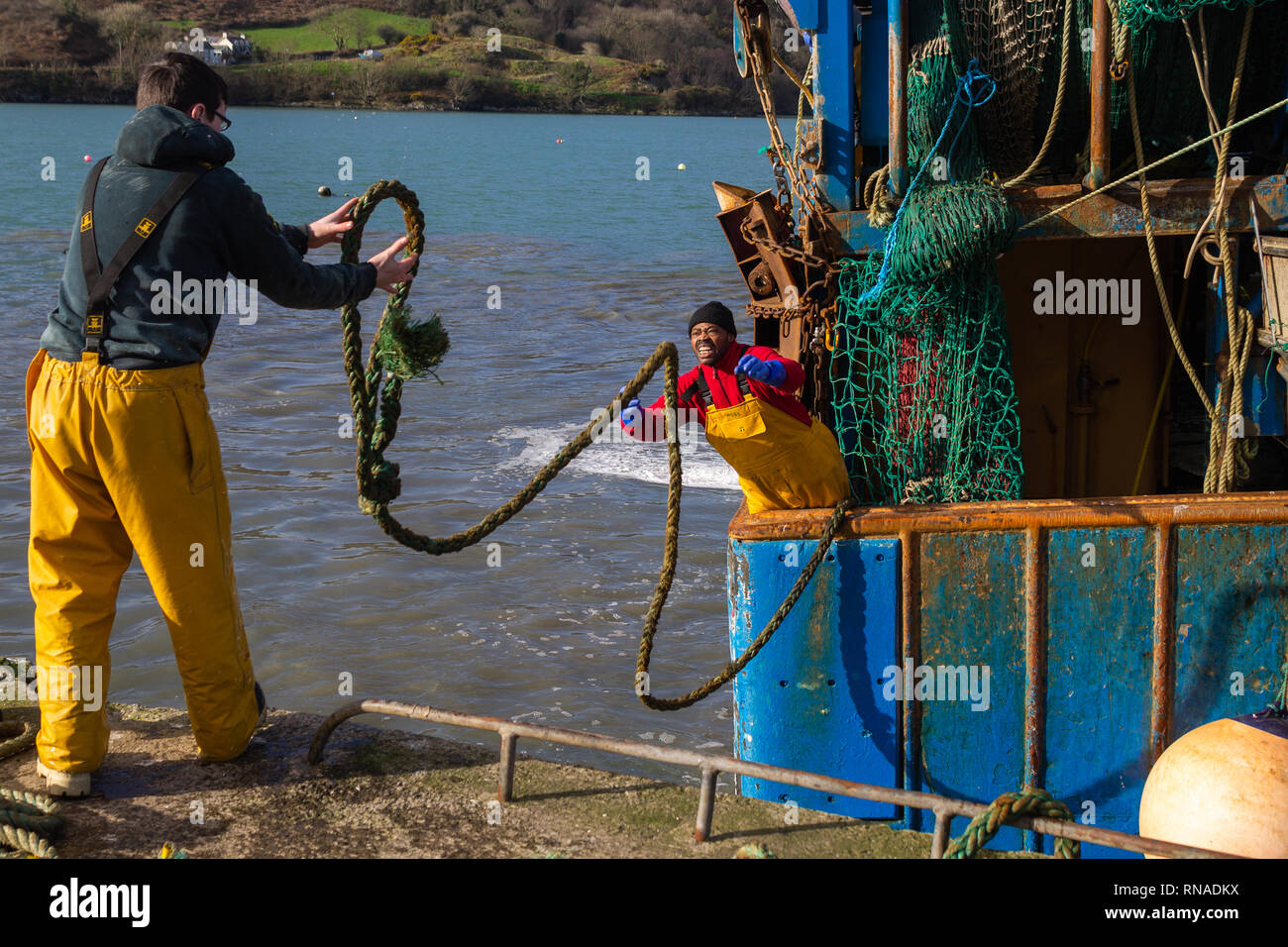 union-hall-west-cork-ireland-18th-feb-2019-trawler-ine-christina-landed-her-fine-catch-of-prawns-coming-alongside-in-union-hall-ahead-of-the-bad-weather-forecast-to-come-this-load-of-7-tons-was-landed-and-in-a-refrigerated-lorry-in-minutes-much-of-it-bound-for-the-continent-credit-aphperspectivealamy-live-news-RNADKX.jpg