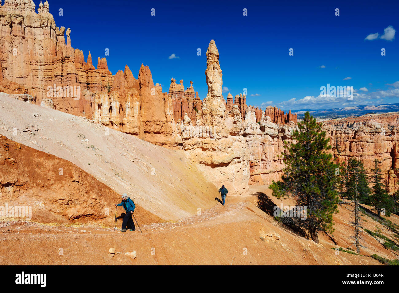 couple-hiking-in-the-mesmerising-environment-of-bryce-canyon-national-park-utah-on-a-bright-sunny-day-RTB64R.jpg