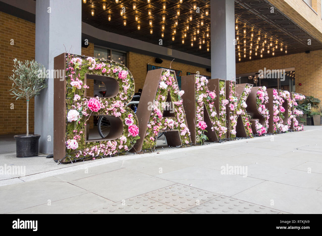 Floral display outside Hilton Hotel, Great Suffolk Street, Bankside, London, SE1, UK Stock Photo