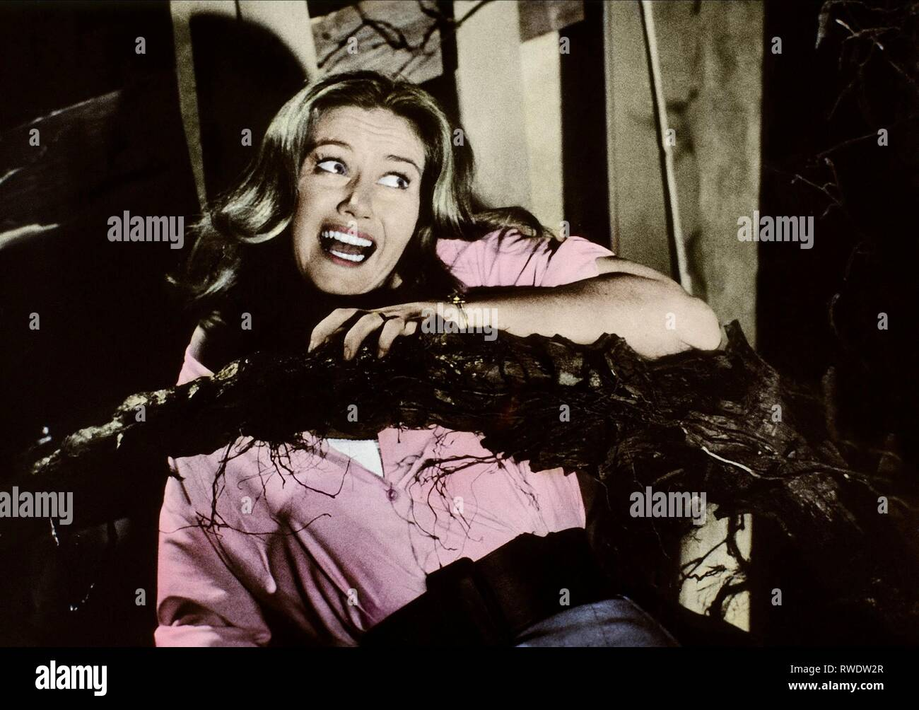 JANETTE SCOTT, THE DAY OF THE TRIFFIDS, 1963 Stock Photo