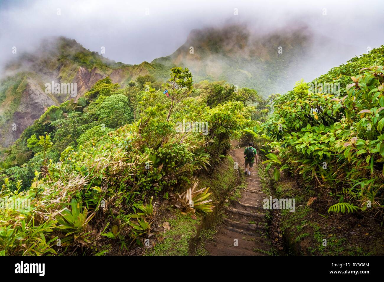 Dominica, Morne Trois Pitons National Park inscribed on the World Heritage List by UNESCO, hikers on the trail to Boiling Lake, on the ridges Stock Photo