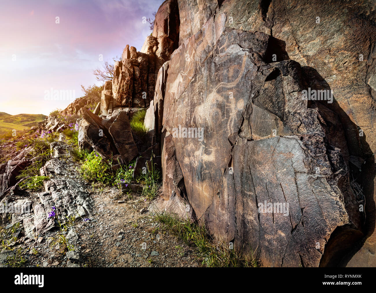 Ancient petroglyph of goats and people on the stone in open air museum Tanbaly at sunset sky background Stock Photo
