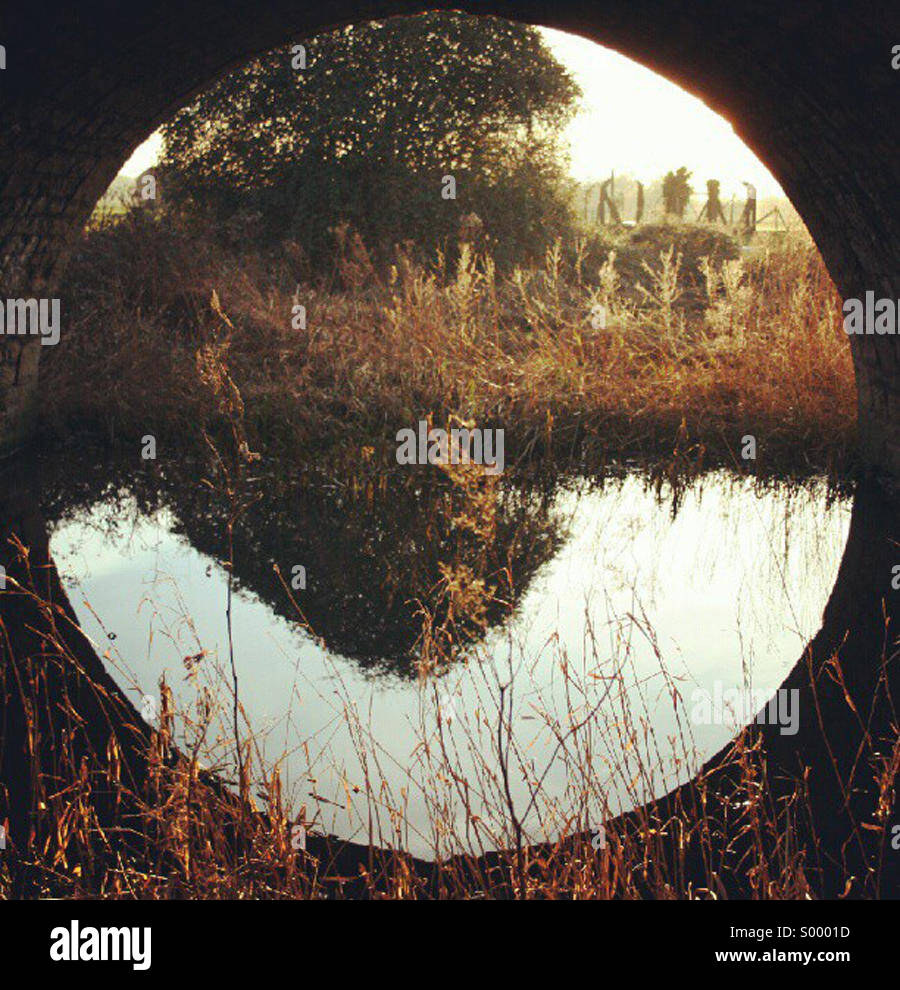 Circular reflection under bridge - Stock Image