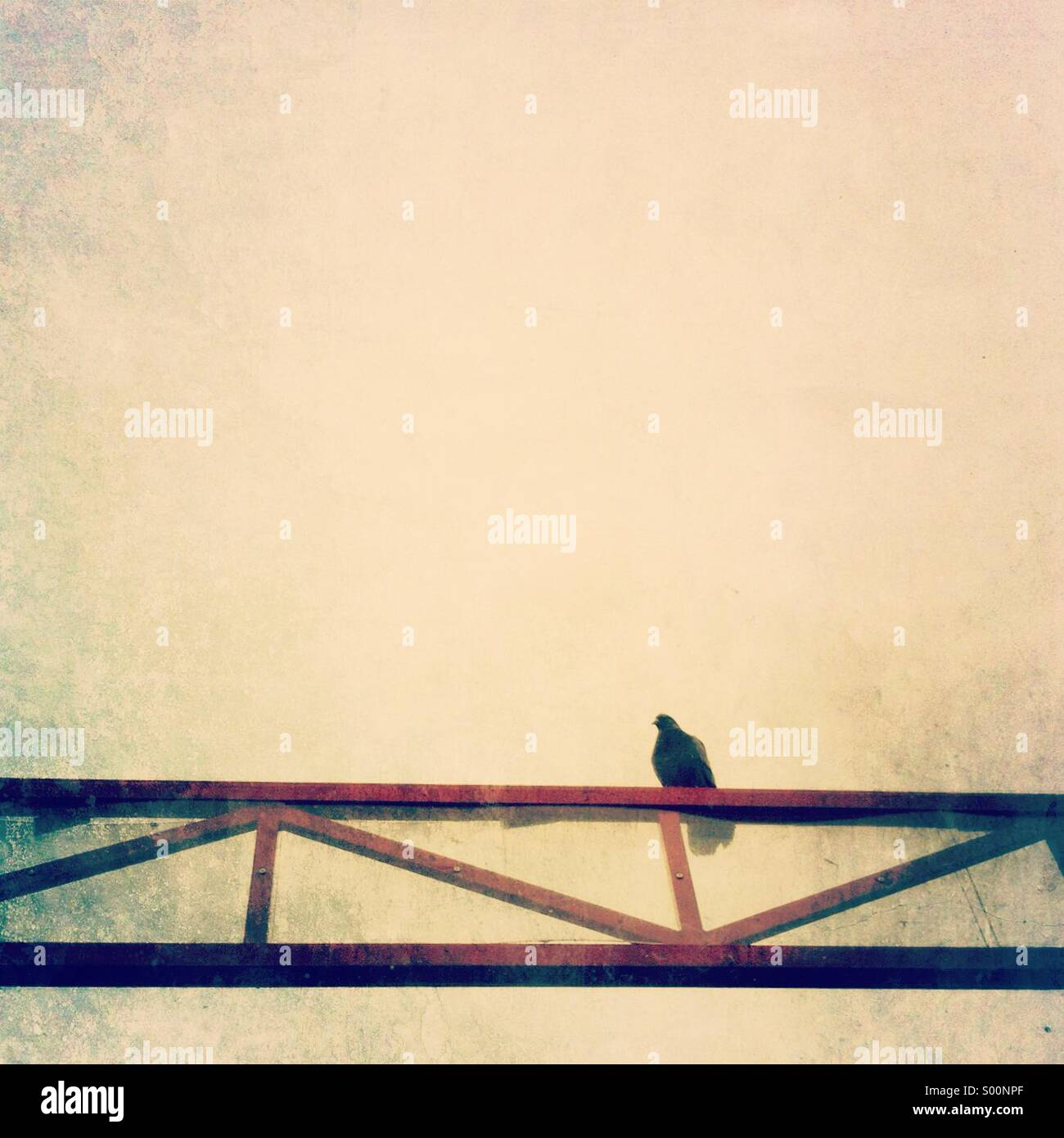 Lone pigeon perches on top of a red metal truss. - Stock Image