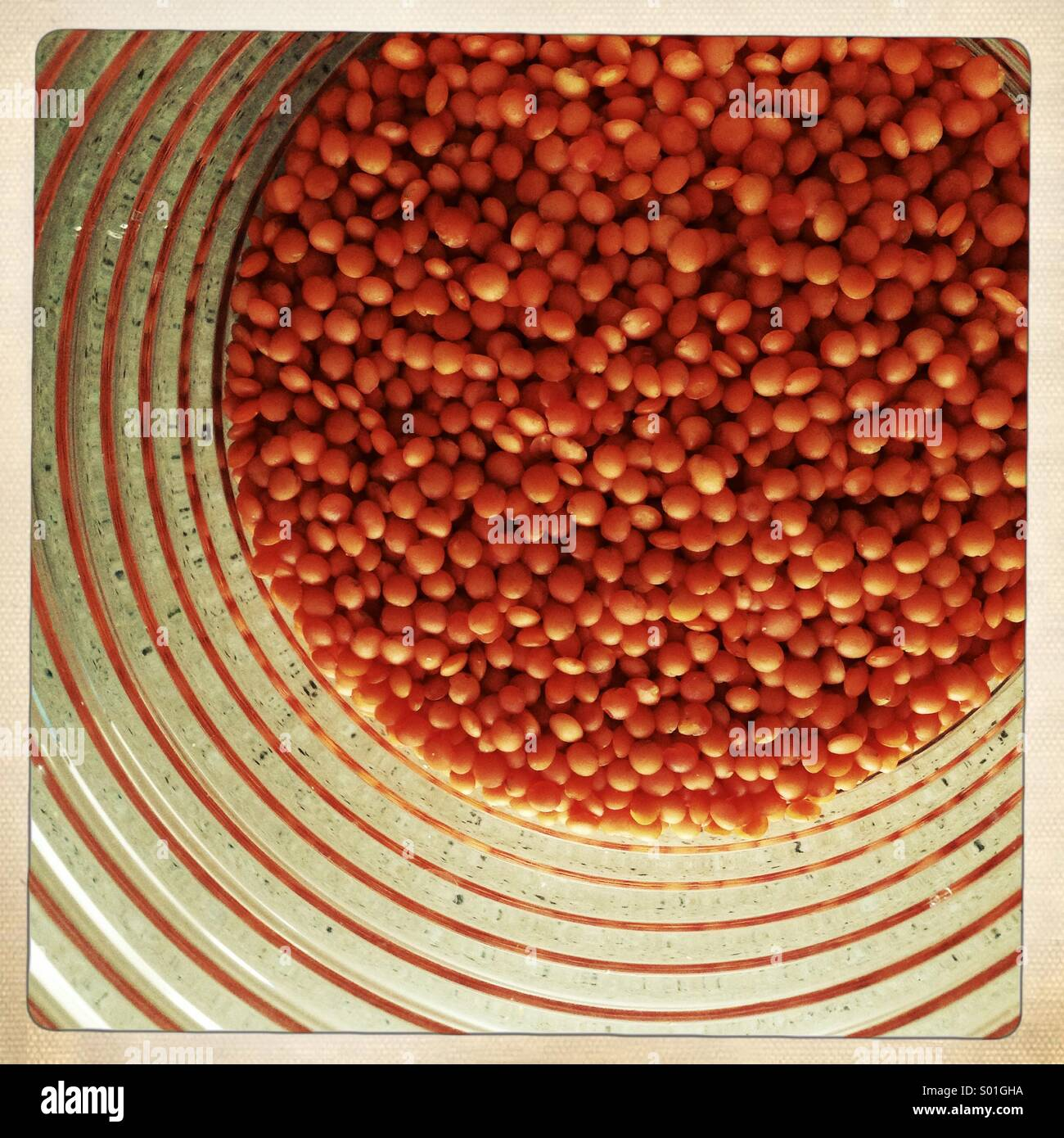 Red lentils in a jar - Stock Image