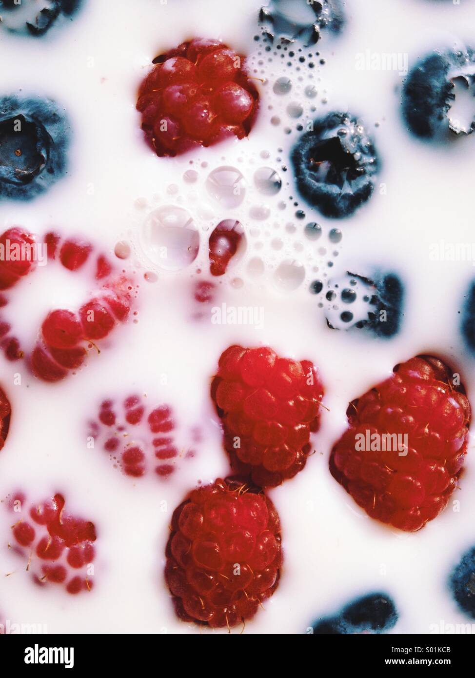 Raspberries and Blueberries in Milk - Stock Image