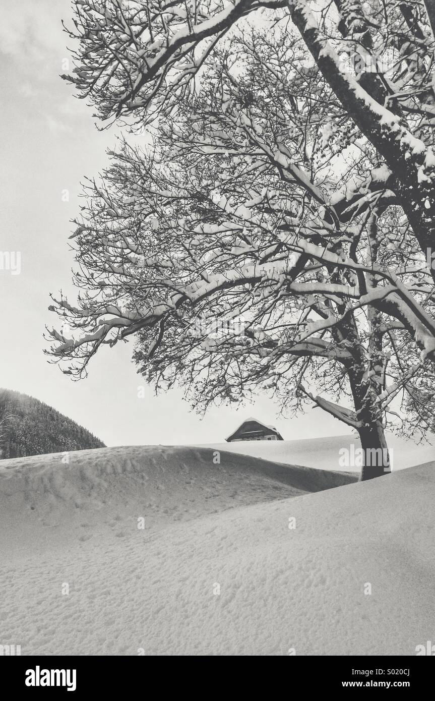 A house in the snow - Stock Image