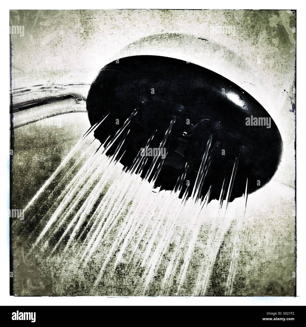 Shower - Stock Image
