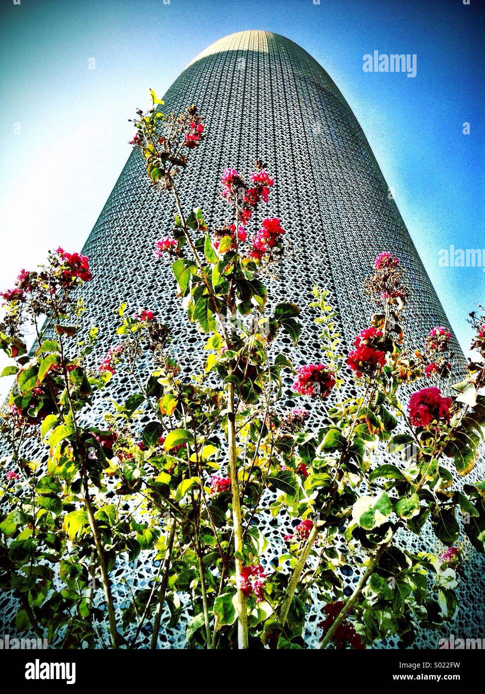Wild flowers grow in front of ultra-modern building, Doha - Stock Image