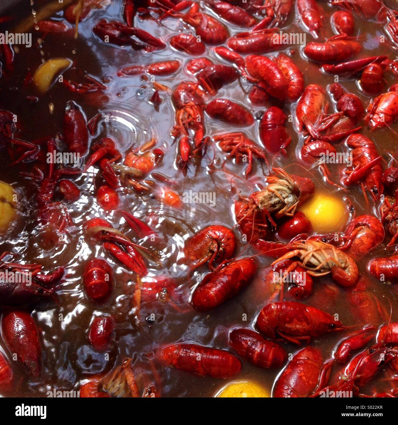 Wild caught Louisiana crawfish boil. - Stock Image