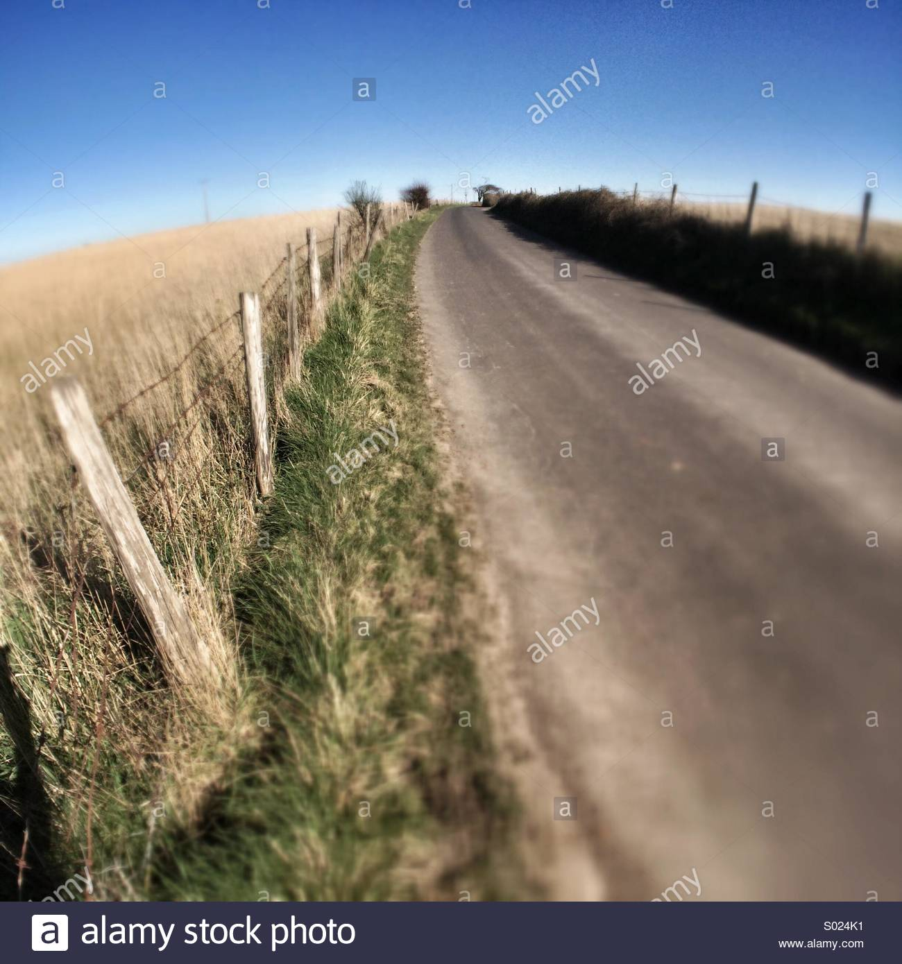 Country Lane, Fence, Road, Field, Rural - Stock Image