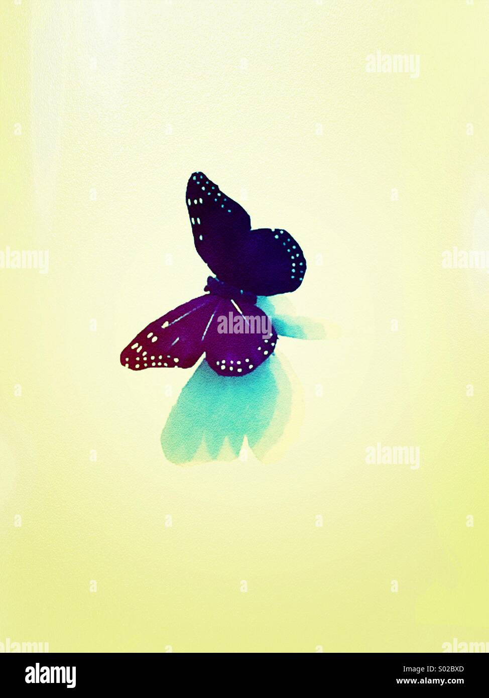 Purple Butterfly (filtered and textured) - Stock Image