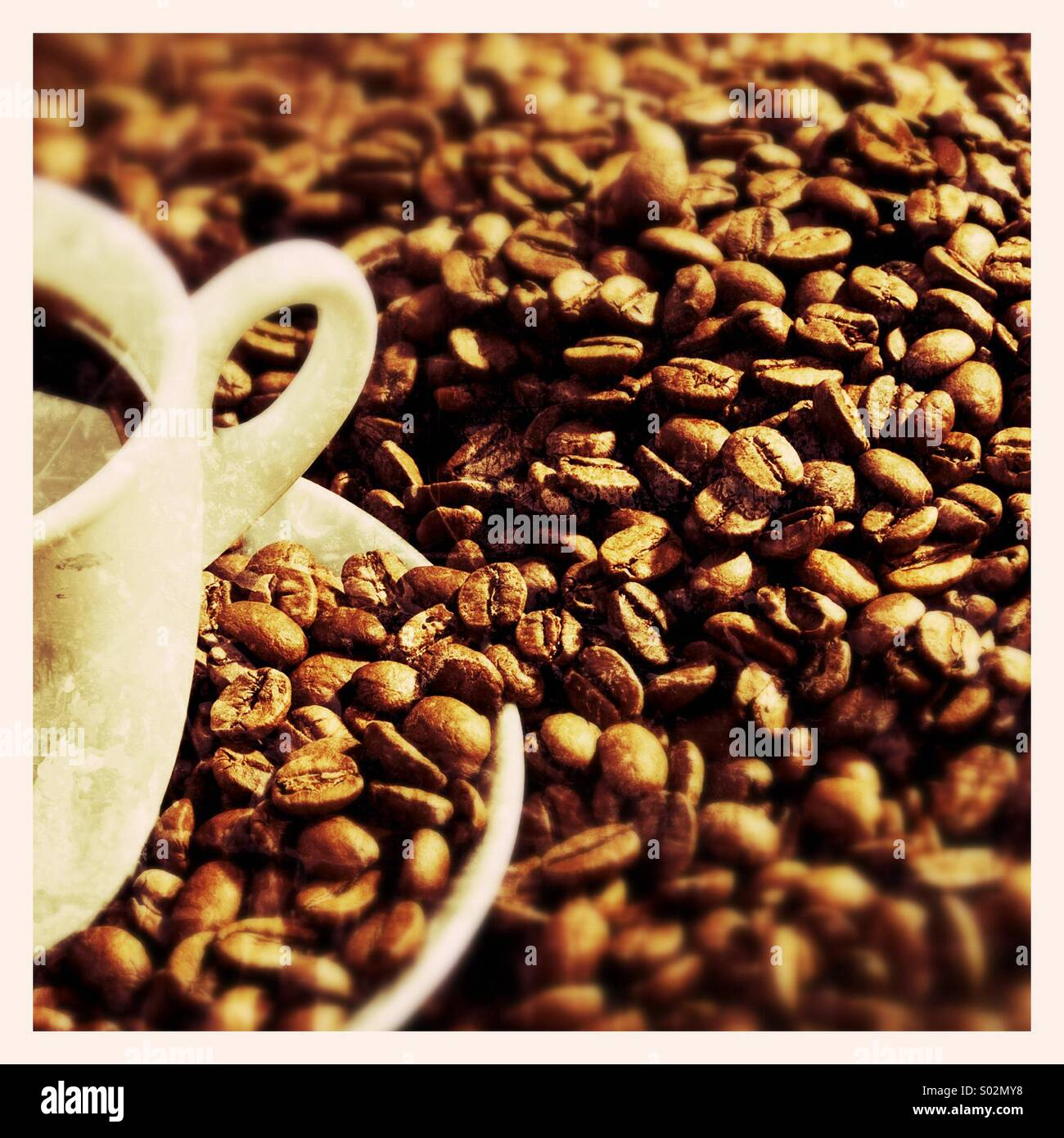 Coffee beans and coffee cup - Stock Image