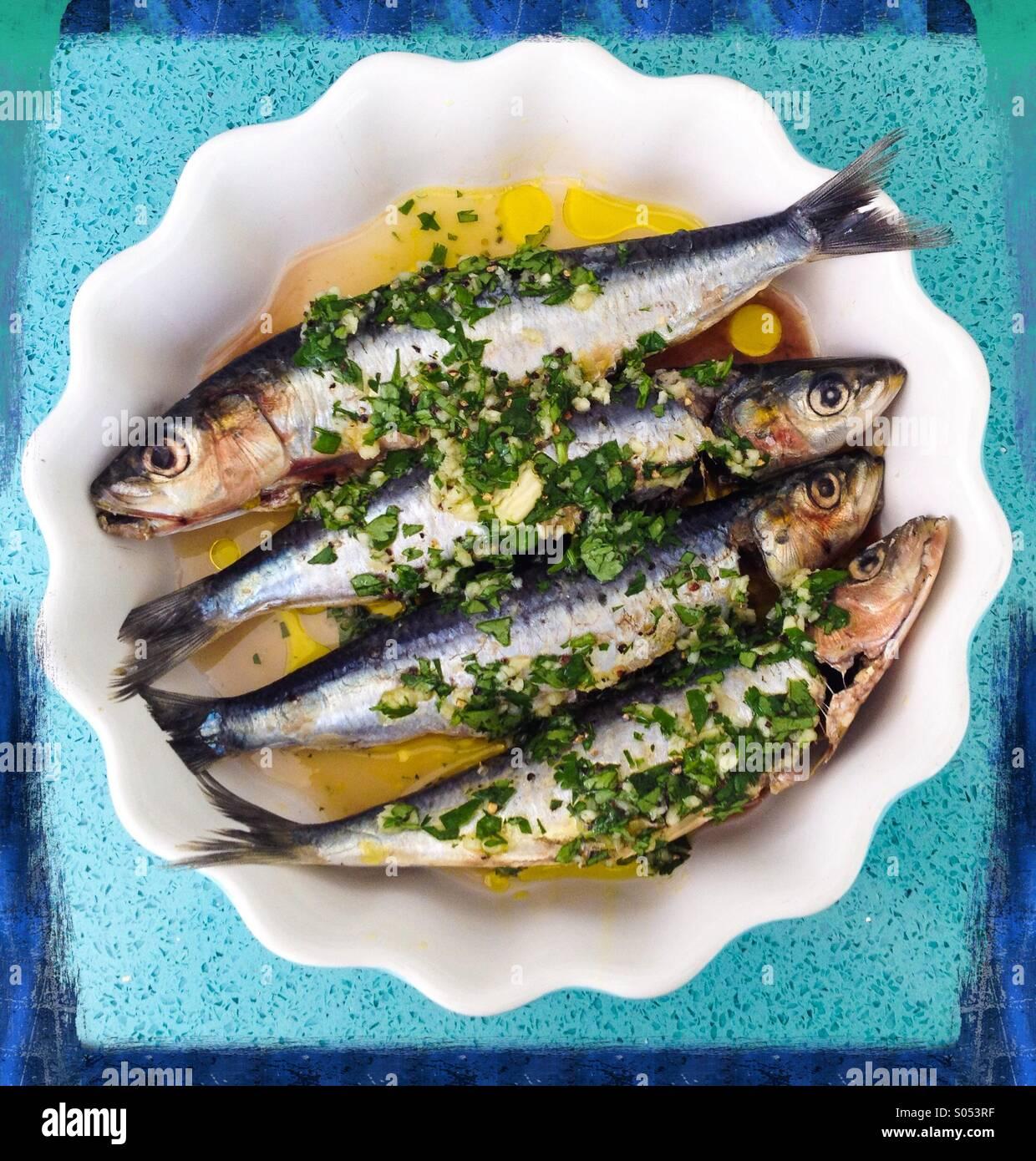 Sardines in lemon juice, garlic,olive oil and coriander. - Stock Image