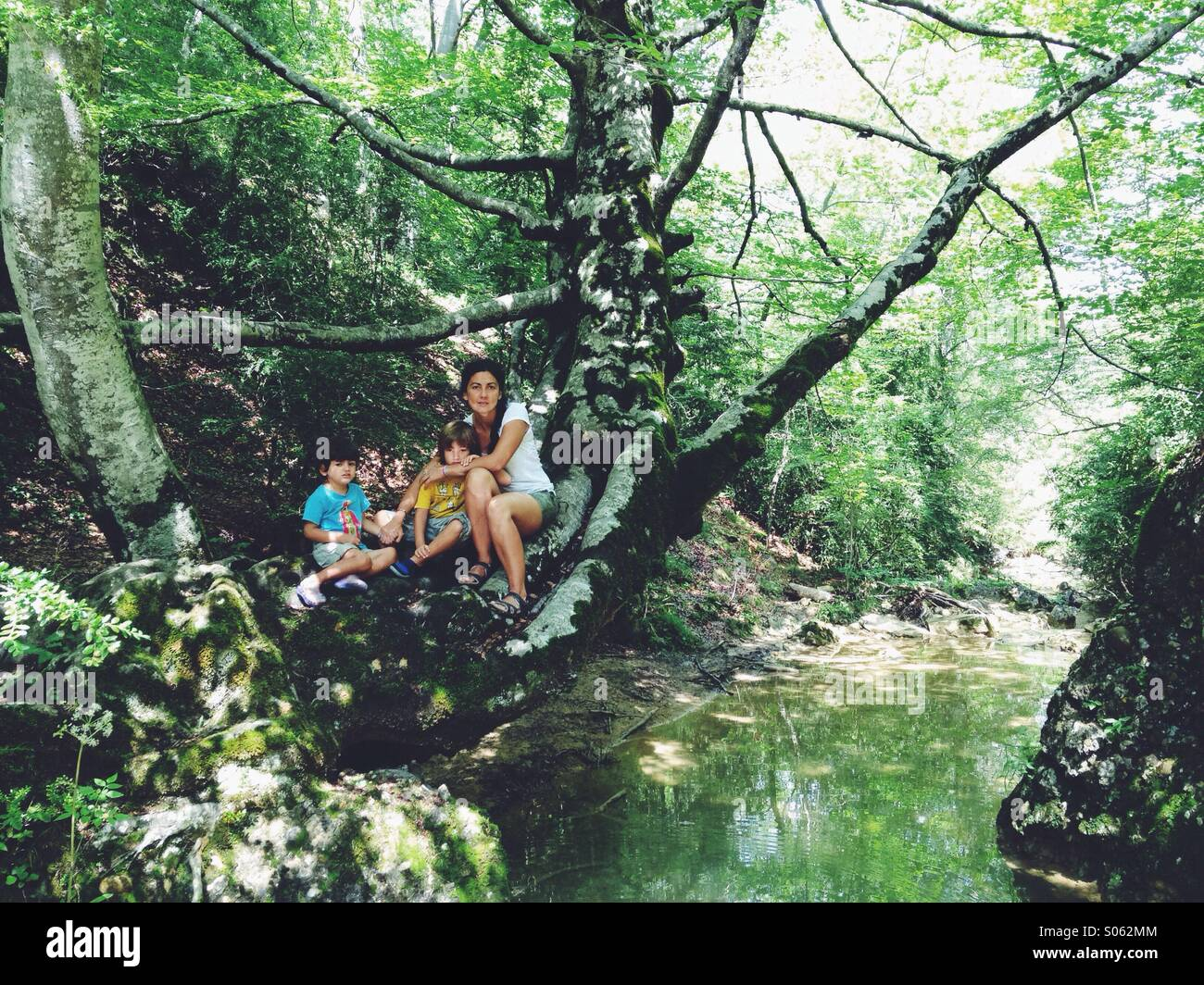 Young woman and two children on a tree next two a river - Stock Image