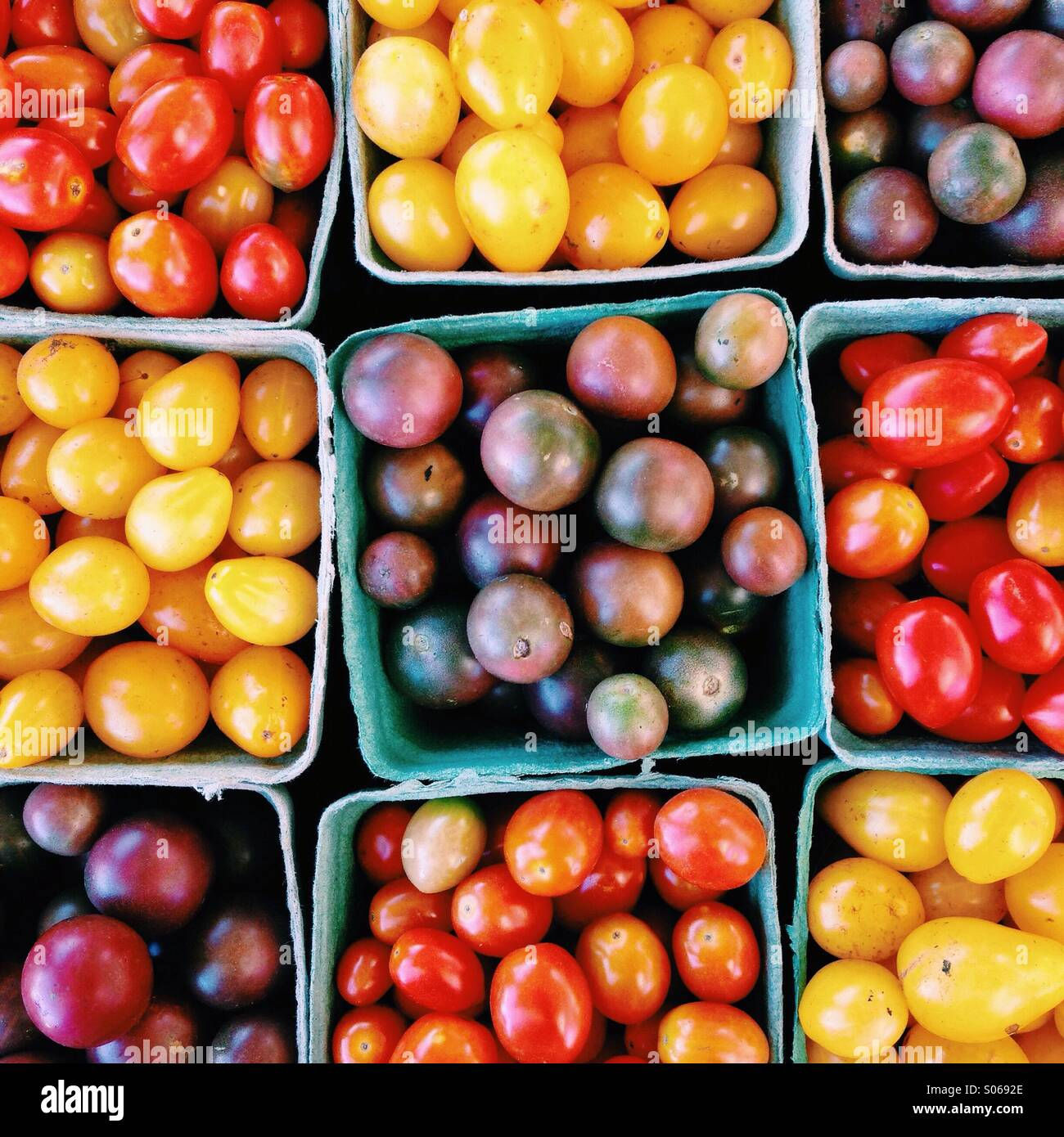Assortment of colourful farm fresh tomatoes - Stock Image