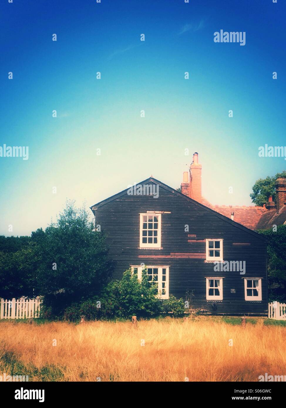 House in a field - Stock Image