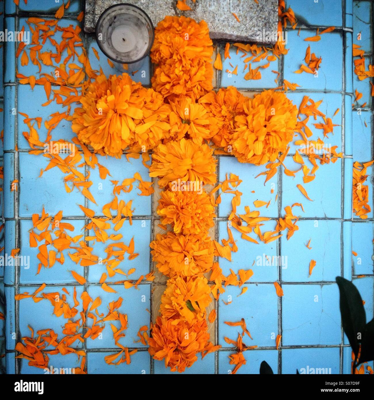 Marigold cross decorating a tomb made with sky blue ceramic tiles marigold cross decorating a tomb made with sky blue ceramic tiles during day of the dead celebrations in san gregorio atlapulco cemetery in xochimilco dailygadgetfo Choice Image